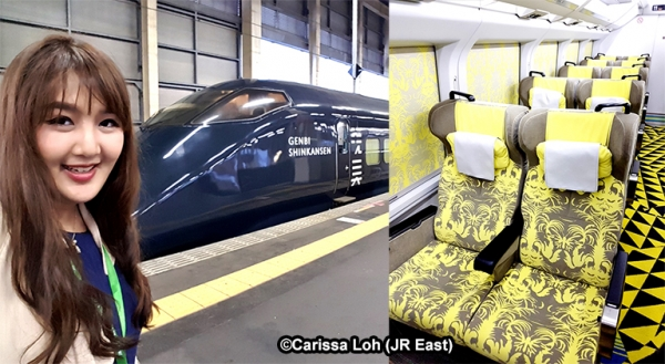 The world's fastest art gallery: GENBI SHINKANSEN