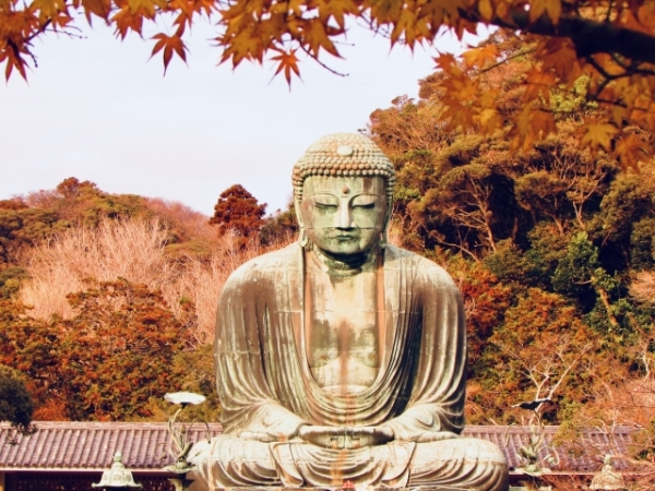 6 cafes to relax at during your Kamakura adventure