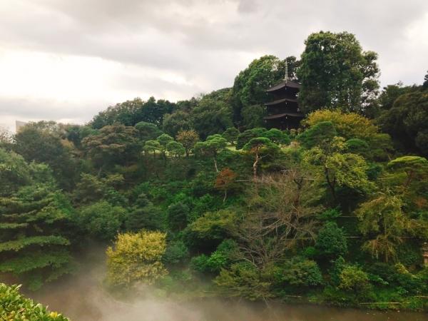 "Walk through a ""Sea of Clouds"" in HOTEL CHINZANSO TOKYO"