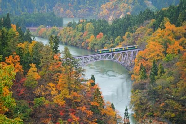 Hop aboard and soak in the hues of autumn at Aizu, Fukushima