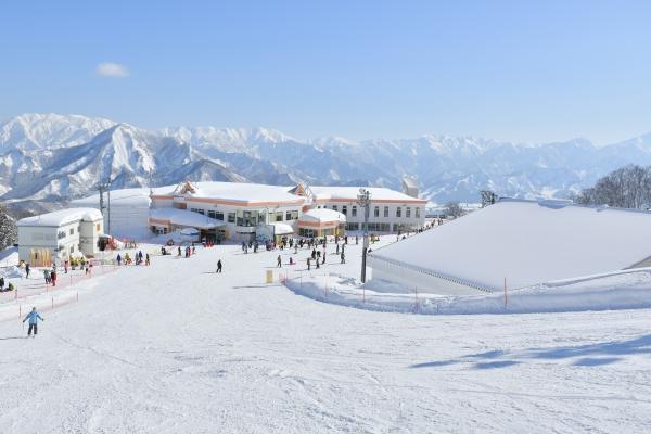 เริ่มแล้วสกีแบบเต็มรูปแบบ! ก...
