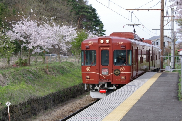 Beyond the brochure: A trip for every season with the JR TOKYO Wide Pass