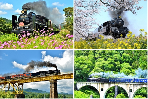 All aboard! Discovering Japan...